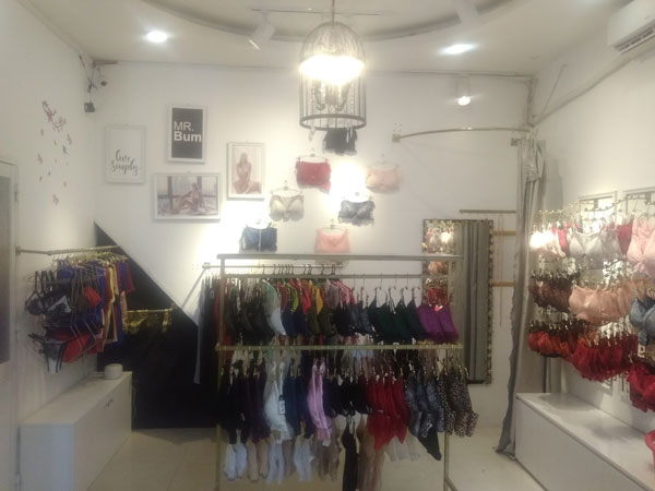 Sang shop Nội Y Đồ thiết Kế Góc 2 Mặt tiền Đường Hoa Lan, Phú Nhuận.