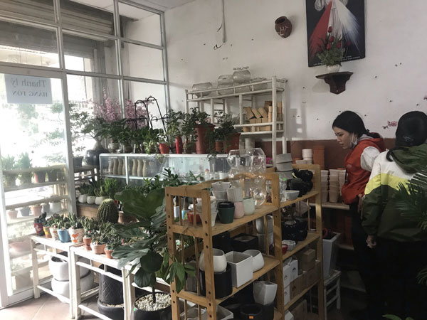 Sang shop Mộc Cây Xinh