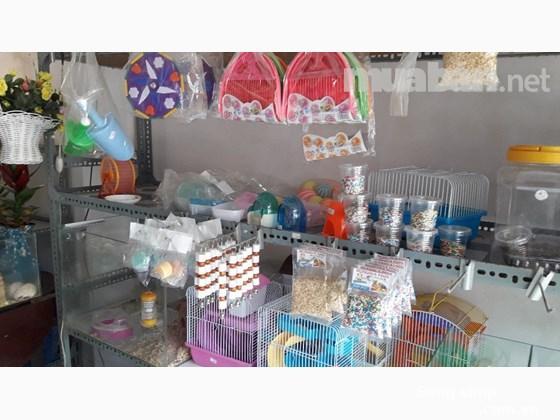 Sang cửa hàng chuyên bán Hamster và Nhím, phụ kiện Quận Thủ Đức