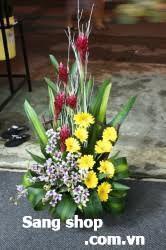 Sang shop hoa tươi giá rẻ